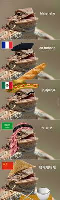 Lizard Meme - lizard memes best collection of funny lizard pictures
