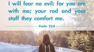 12 encouraging bible verses overcome adversity
