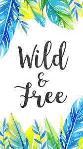 wild u0026 free watercolour feather wallpaper u2014 life with chnar u0027john