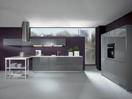 Kitchen Ideas Pictures Modern Modern Gray Kitchen Cabinets 08 Alno Com Kitchen Design Ideas