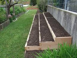 strawberry garden beds gardening ideas
