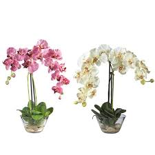 Flowers Glass Vase Phalaenopsis Silk Flower Arrangement With Glass Vase Free