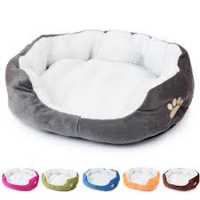 Cute Dog Products by Super Cute Puppy Reviews Online Shopping Super Cute Puppy