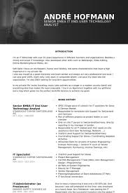 It Specialist Resume Sample by Technology Analyst Resume Samples Visualcv Resume Samples Database