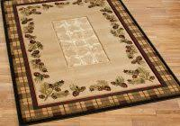 Lodge Style Area Rugs Picture 11 Of 50 Lodge Area Rugs Lovely Lodge Style Rugs Home