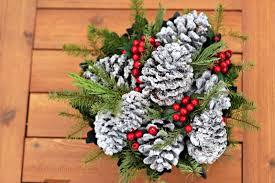 natalie u0027s sentiments snowy pine cones