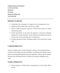 resume profile exle profile on a resume 28 images resume profile cv template