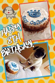 superman birthday cake for dog all natural ingredients dog