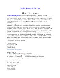 latest resume model latest resume format for freshers resume peppapp resume for