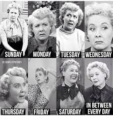 i love lucy memes 140 best i love lucy images on pinterest lucille ball i love