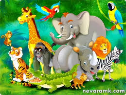image gallery jungle wallpaper for kids