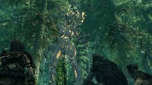 shoddycast elder scrolls lore ch 15 wood elves of valenwood