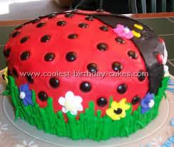 ladybug birthday cake coolest ladybug birthday cakes