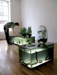 Best Aquarium Ideas Images On Pinterest Home Animals And - Home aquarium designs