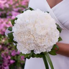 bridal bouquets best white carnation bridal bouquet global