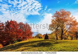 colorful autumn trees landscape fall season stock photo 147014447
