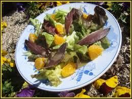cuisiner les magrets de canard salade de magret de canard séché à l orange recette iterroir