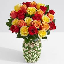 multi colored roses multi colored roses multi color roses proflowers