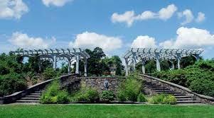 botanical sts arboretums massachusetts l arboretums boston l gardens massachusetts