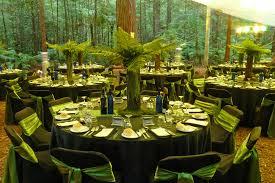 redwood forest wedding venue event impressions redwood forest events rotorua forest