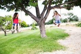 backyard farming tree talk