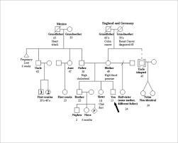 printable free family tree template family tree template 37 free printable word excel pdf psd ppt