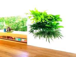 best planters indoor living wall planter indoor wall planter living wall planters