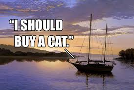 Cat Buy A Boat Meme - i should buy a boat cat boating image macro and meme