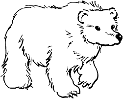 coloring page coloring pages bear black page png ctok