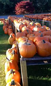 Cape Cod Weather October - 41 best live on cape cod images on pinterest cape cod dream