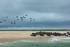 cape cod beaches u0026 boardwalks for fall travels