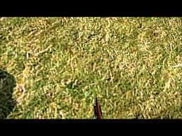 Dayz Sa Map Dayz Standalone Chernarus Map End Glitch Youtube