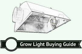 best grow lights on the market choosing the best grow light for marijuana in 2018 grow light central