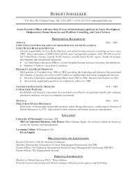 sample resume for ceo resume expample example of chronological resume template entry