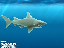 Hungry Shark Map Hungry Shark Evolution New Shark
