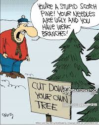 pine trees cartoons and comics funny pictures from cartoonstock
