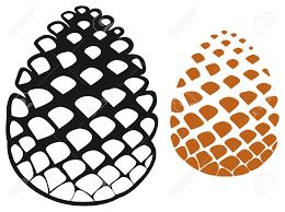 pine cone pine tree cone pinecone royalty free cliparts vectors