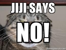 Angry Cat Meme Generator - jiji says no angry cat meme generator