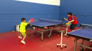 the expert table tennis