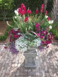 Summer Flower Garden Ideas - my summer flower pot teresa garden ideas pinterest flower