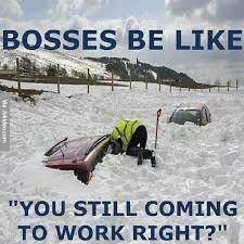 Boss Meme - funny boss memes the best boss memes online
