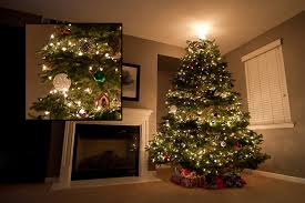 how to get your christmas tree lights to sparkle