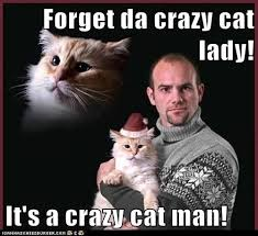 Crazy Cat Memes - forget da crazy cat lady it s a crazy cat man lolcats lol