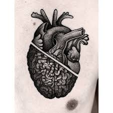 best 25 anatomical heart tattoos ideas on pinterest anatomical