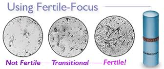 ferning pattern in spanish ovulation microscope natural fertility tool