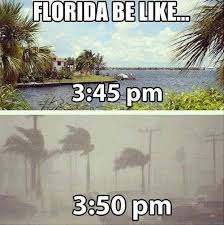 Funny Florida Memes - 23 things everyone who lives in florida will understand weather