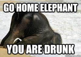 Elephant Meme - go home elephant you are drunk drunk baby elephant quickmeme