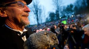 groundhog history facts history headlines