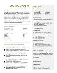 sle resume of java developer 28 images software developer