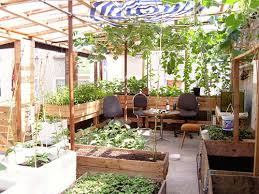 designed for installation in home vegetable garden cây xanh đồng nai